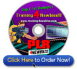 PLR For Newbies Video Series-Creating Your Own Unique New Pr