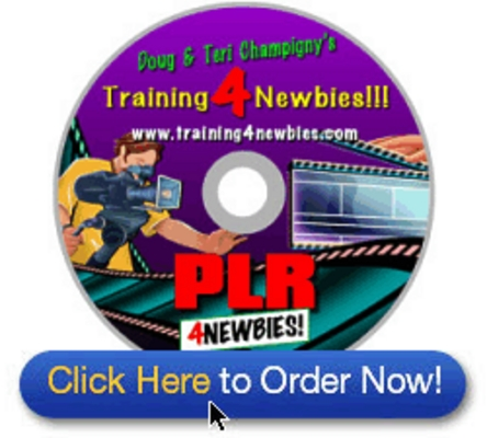 Product picture PLR For Newbies Video Series-Creating Your Own Unique New Pr